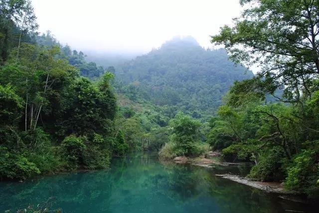 【茂兰山谷音乐节】荔波周边嬉戏——景区篇