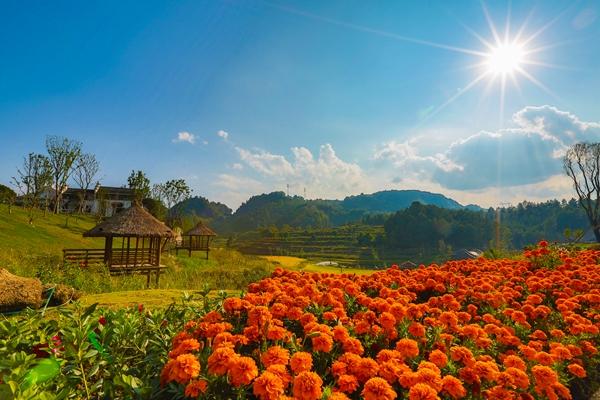 贵阳市:旅游扶贫显成效 全面小康不是梦